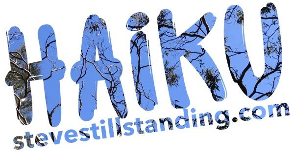 Haiku - stevestillstanding.com